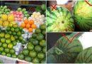 Bà cụ bán 50 năm ở chợ đầu mối chia sẻ kinh nghiệm lựa trái cây ngon ngọt, không hóa chất