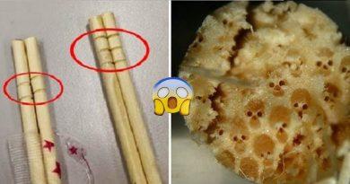 Nếu bạn thấy những vòng tròn trên đôi đũa dùng một lần, hãy bỏ ngay đừng dùng nó để ăn vì…